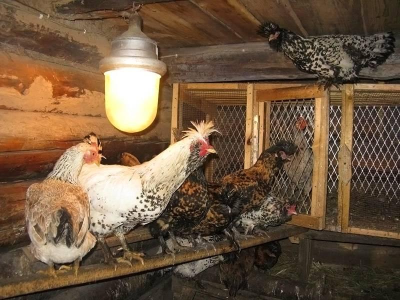 Использование обычных ламп