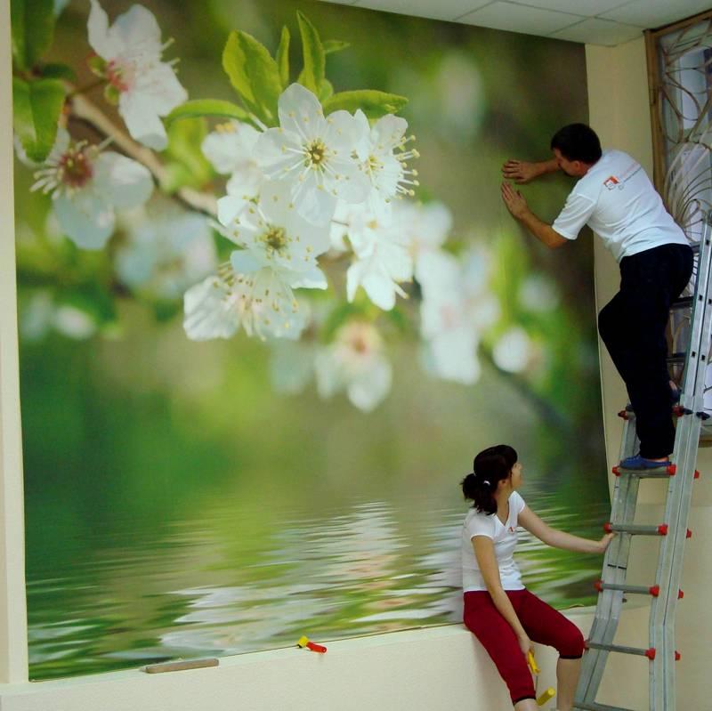 Стремянка пригодится для работы с высокими стенами