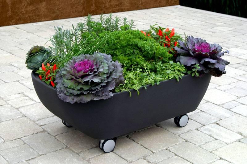 Цветник на колёсиках может перемещаться в любую часть двора