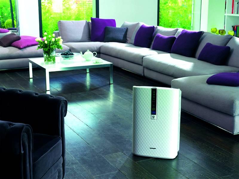Осушитель воздуха для квартиры: цены, отзывы