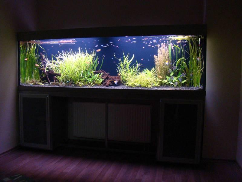 Для аквариума подойдёт лента с силиконовой защитой. Даже если рыбки будут слишком плескаться у поверхности, капли влаги не повредят прибору