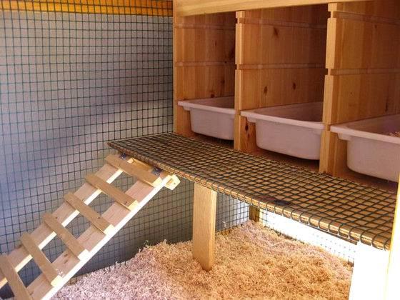 Надо предусмотреть установку конструкции для передвижения птиц к гнездам.Расстояние между ступеньками лестницы не делают чрезмерным