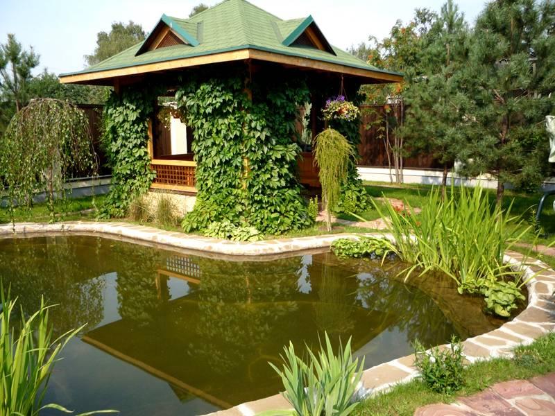 Хорошим выбором станет вид на сад или водоём, если такой имеется на участке. Подойдёт небольшой пруд или бассейн