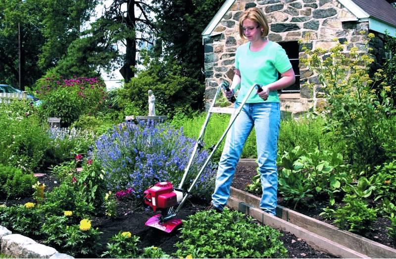 Аккуратную обработку земли около корней растений удобно выполнять с помощью компактной техники