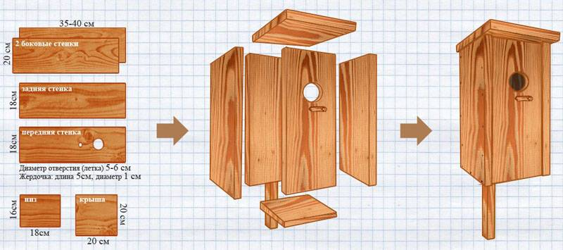 Чертежи с размерами типичного деревянного домика для птиц подойдут для создания качественного аналога из фанеры