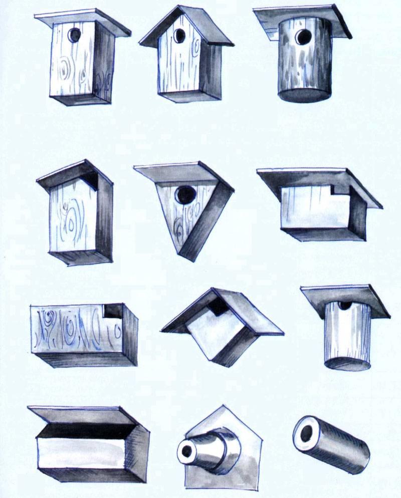 На фото с разными вариантами видно, что имеет значение не только диаметр отверстия в скворечнике, но и расположение летка