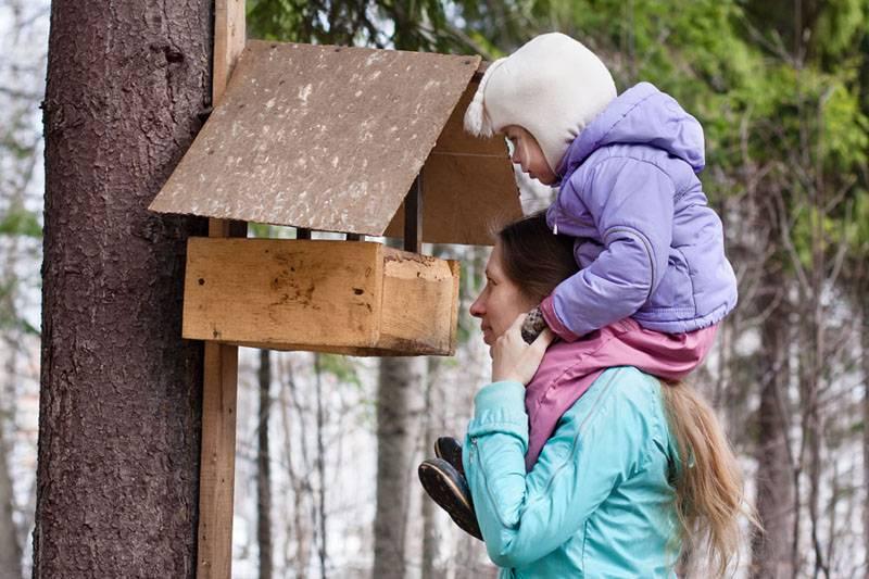 Привлечь птиц на участок поможет подобная кормушка, сделанная своими руками