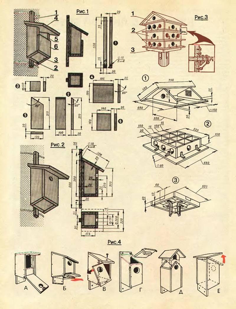 Как сделать одиночный и коллективный домик для синичек, помогут разобраться эти чертежи