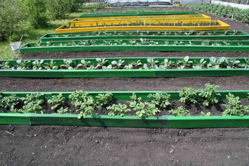 Ровные и аккуратные грядки, на которые удобно высаживать растения