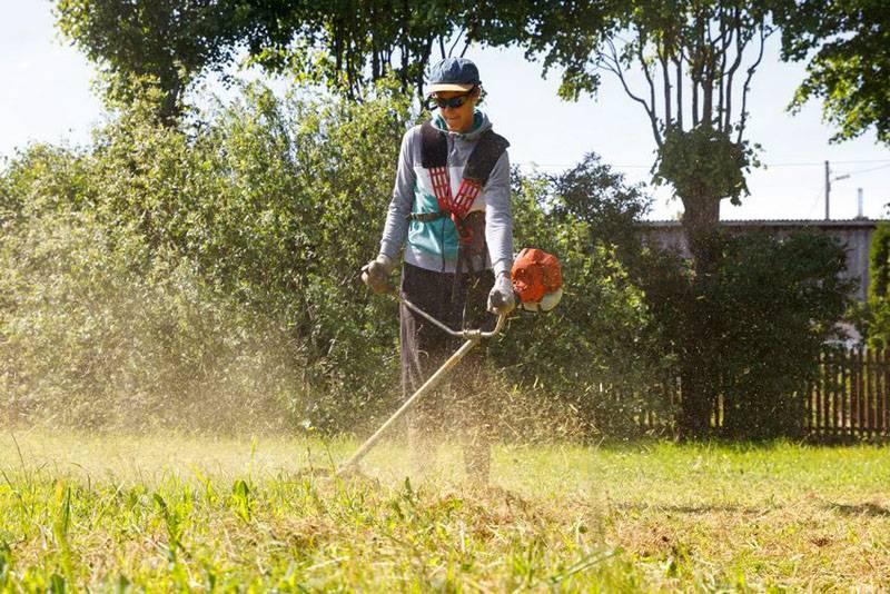 Покупка бензинового триммера для травы поможет успешно решить бытовые и профессиональные задачи