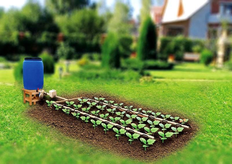 Тефтели (как в садике) - пошаговый рецепт с фото 35