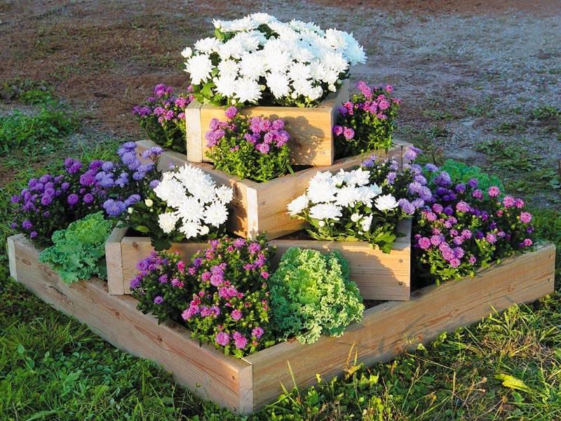 Красивые клумбы с цветами своими руками на даче