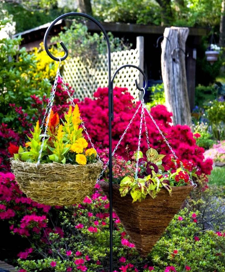 Фото цветов что плетутся
