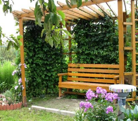 Простая конструкция под шатром вьющихся растений