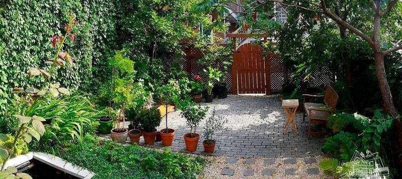Это фото объясняет, как обустроить садовый домик качественно при ограниченном свободном пространстве. Необходимо использовать вертикальное озеленение, тщательно планировать распределение территории для функциональных зон