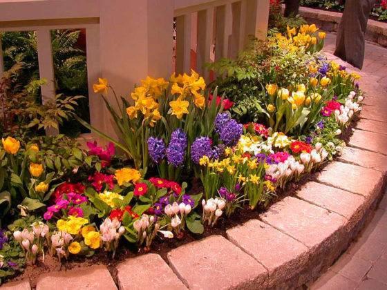 Фото цветника в саду частного дома со стенкой из камня – надежная и долговечная конструкция