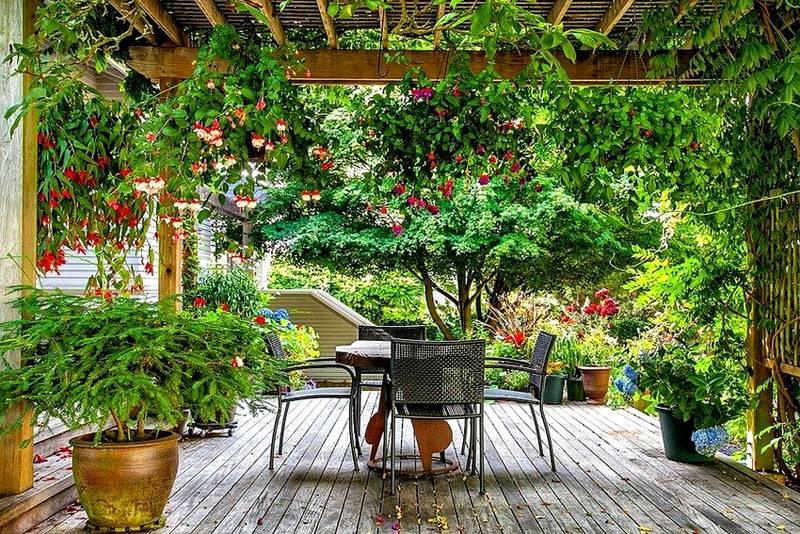 Закрепить растения можно непосредственно на частях архитектурных сооружений