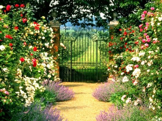 Настоящий сказочный сад