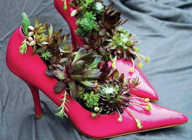 Из обуви создают миниатюрные цветники