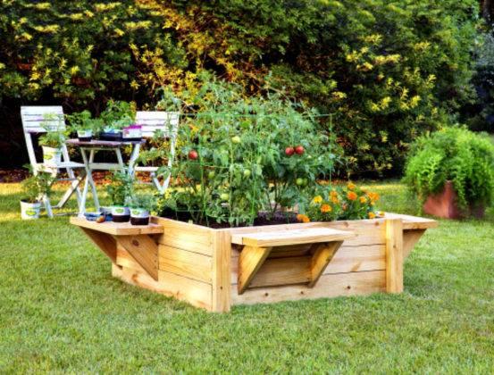 Островок для овощей посреди газона