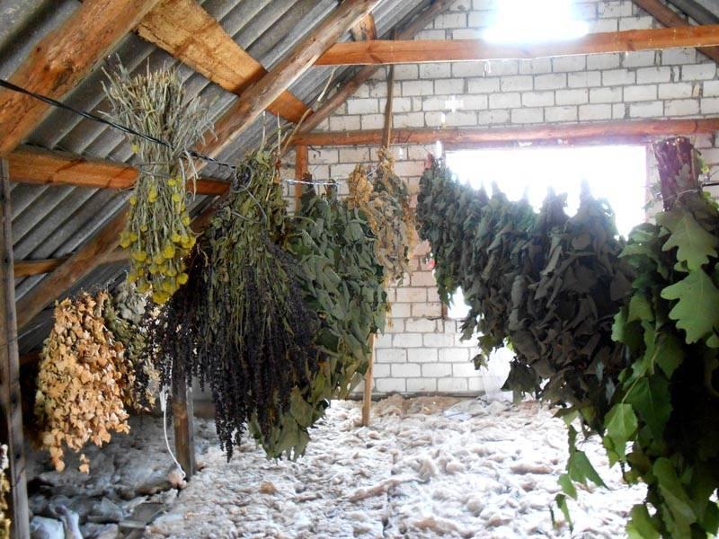 При желании, можно создать конструкцию с мансардой, в которой разместить сушильню для банных веников и лекарственных трав