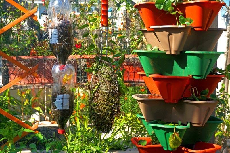 Необычный вертикальный огород