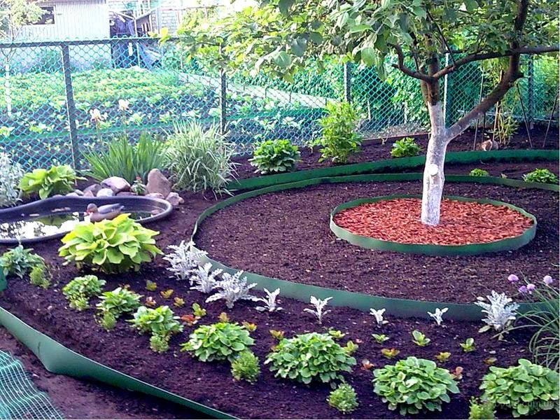 Посадить сад своими руками