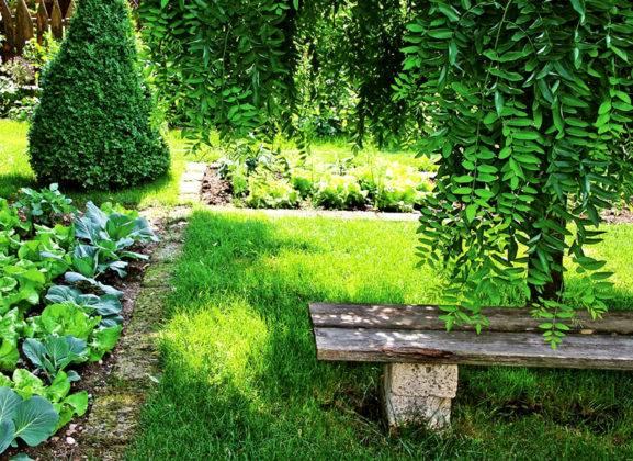Разделение зоны отдыха и огорода