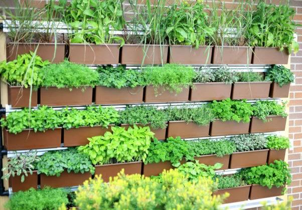 Вертикальная конструкция для разной зелени