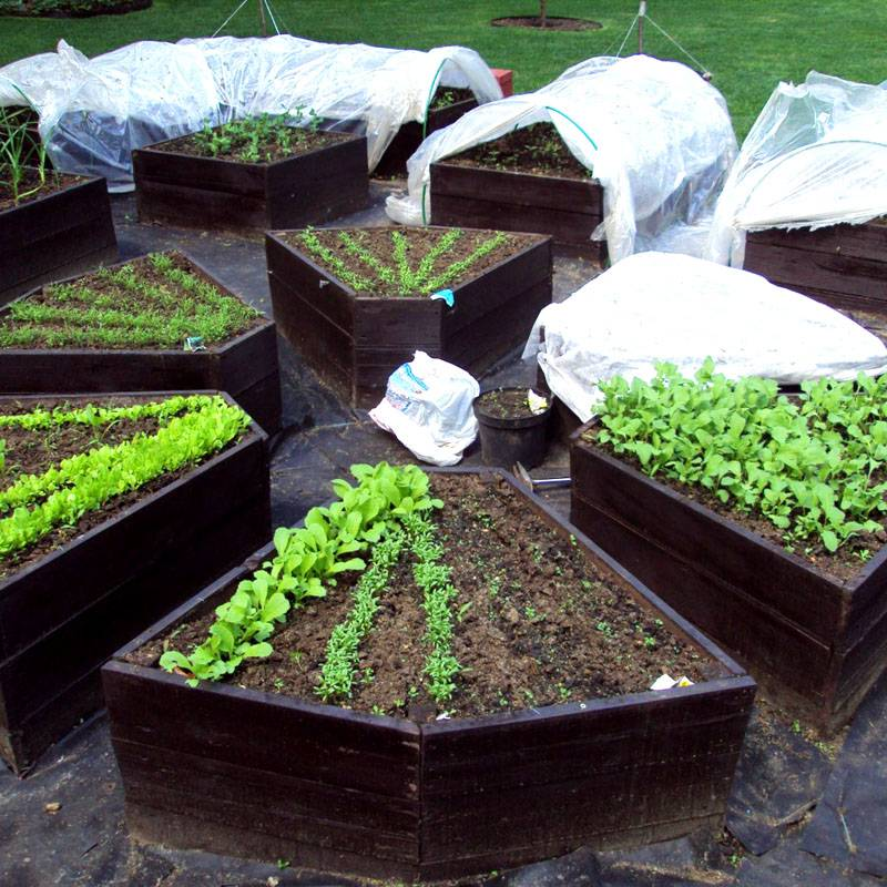 Маленькие и аккуратные места для посадки растений