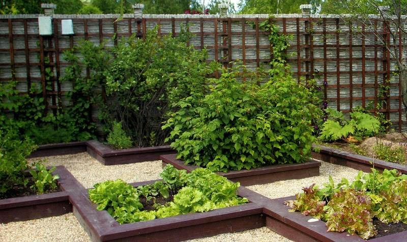 Чередование мест для растений и дорожек