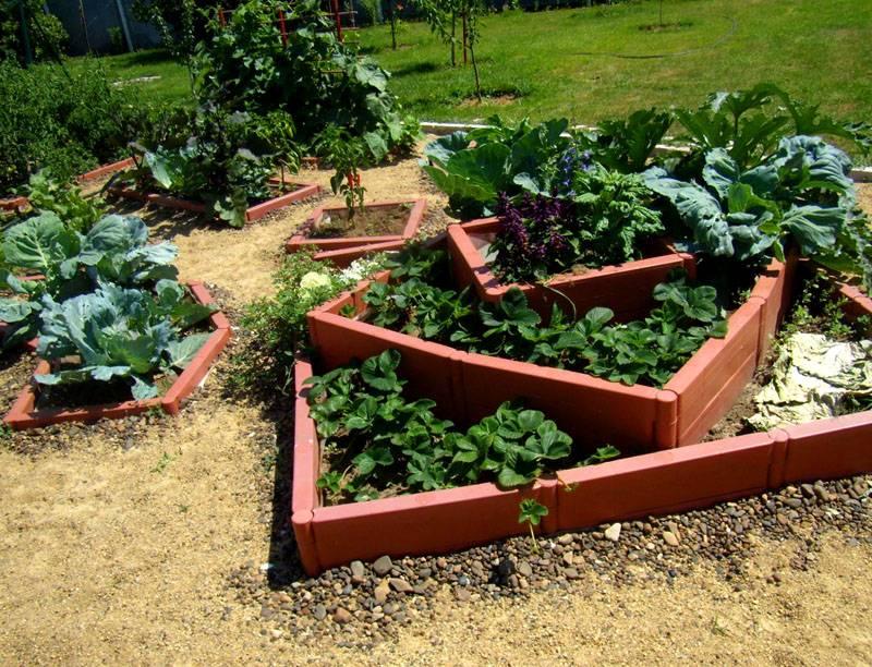 Многоуровневая конструкция для нескольких видов растений
