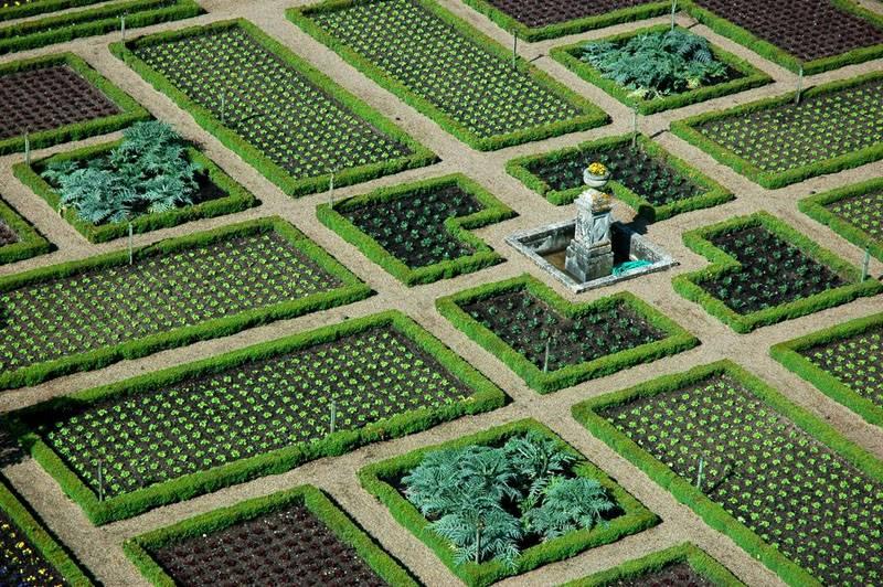 Идеально ровный огород