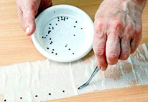 Как сделать клейстер из подручных материалов: проверенные рецепты и советы профессионалов