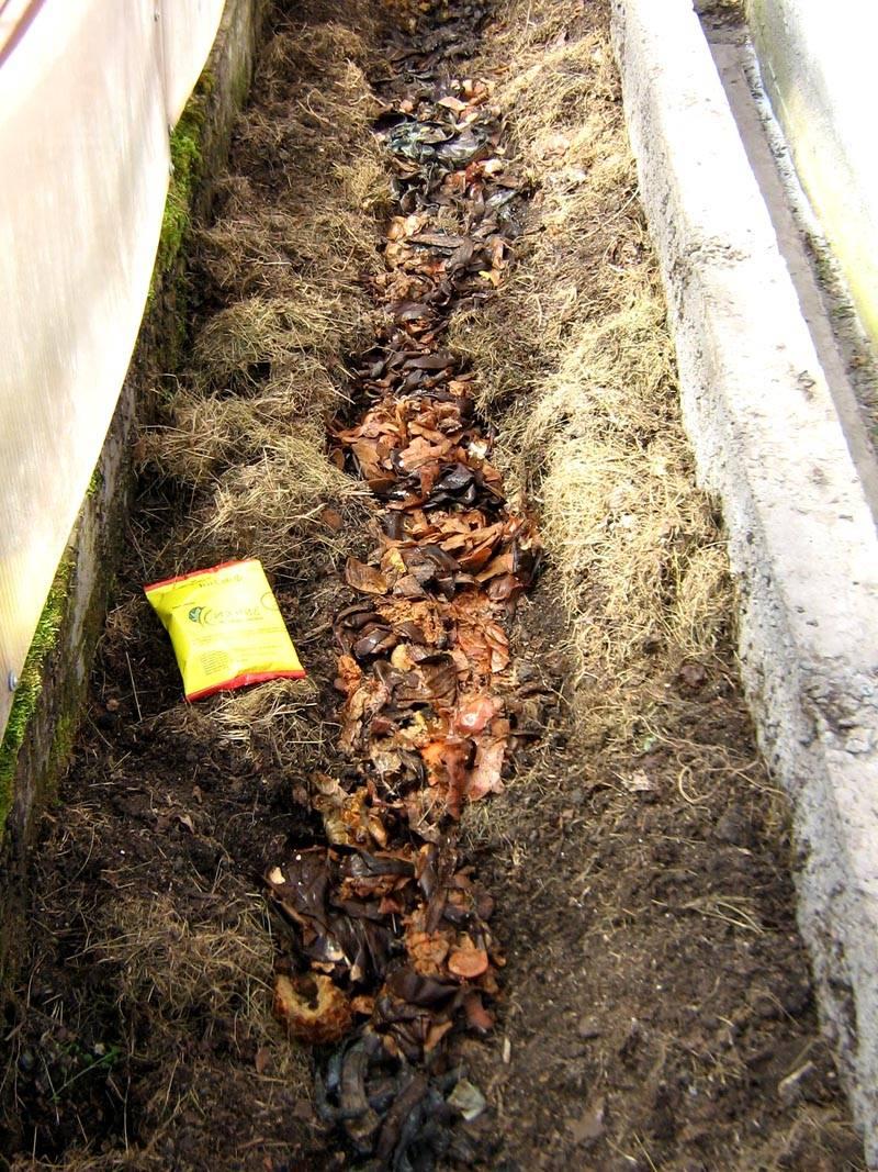 В яму для теплой грядки скидываются пищевые отходы