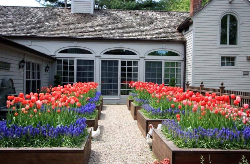 В таком саду будет очень приятно проводить время