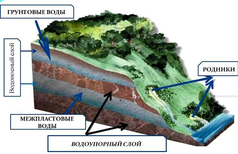 Сложный рельеф, наличие холма или родника поблизости, другие природные факторы способны повысить уровень воды