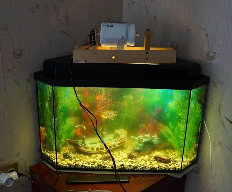Автокормушка – гарантия того что рыбки будут накормлены вовремя