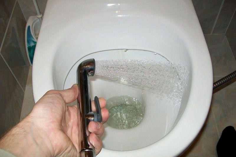 Помыть унитаз можно душем