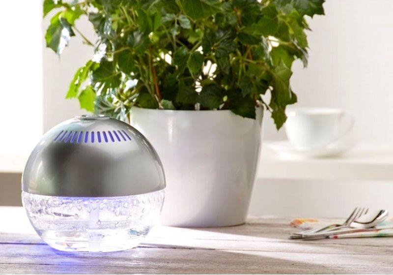 С увлажнителем растения растут лучше, соответственно и кислорода вырабатывают больше