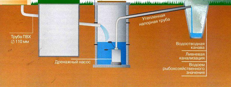 Очищенная вода может использоваться для различных целей