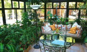 Оранжерея или зимний сад