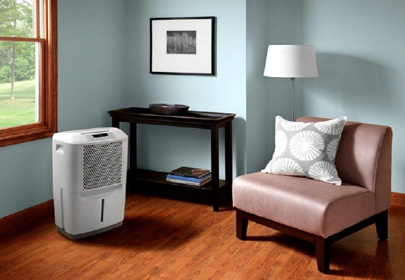 Осушитель воздуха и незашторенные окна летом помогают избавиться от излишней влаги в квартире