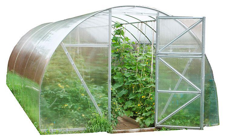 Теплицы из поликарбоната – гарантия хорошего урожая
