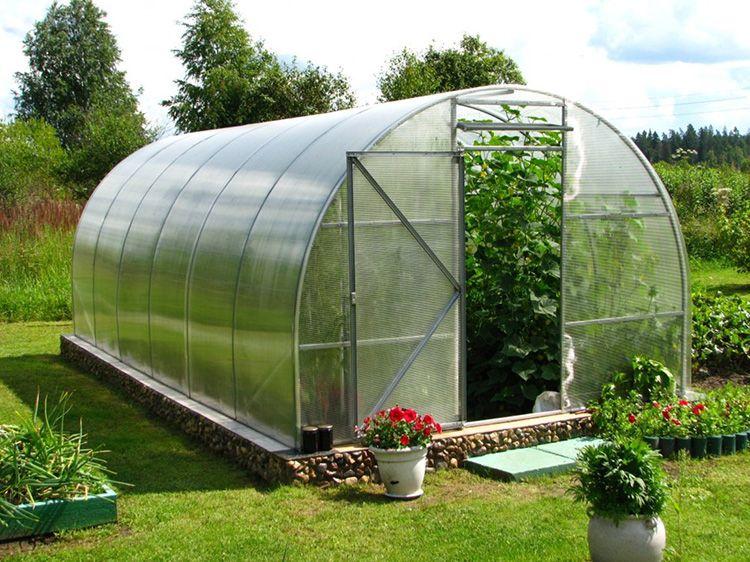 В летних парниках урожай выращивают только в тёплое время года
