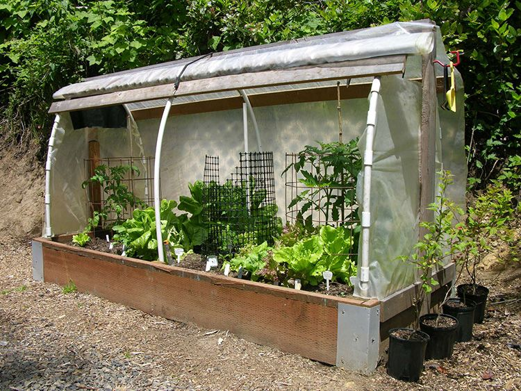 Богатый урожай с минимальными затратами: делаем простой и эффективный парник из подручных материалов своими руками