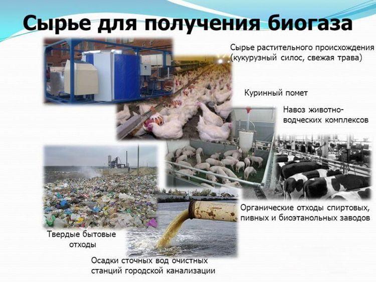 Сырьё для получения биогаза