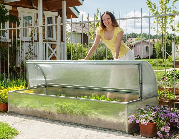 Теплица или парник с открывающимся верхом позволяет контролировать рост растений в любое время и обеспечивать оптимальные показатели влажности