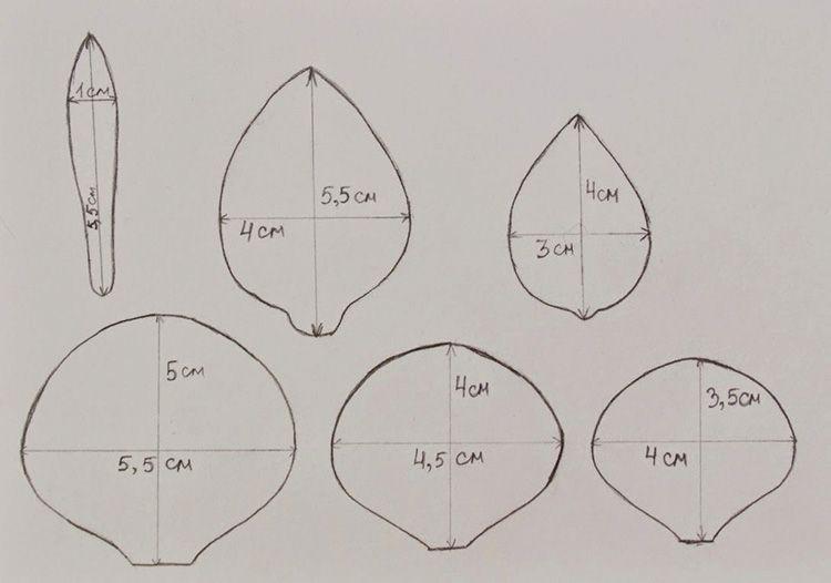 Классические шаблоны для цветов розы из фоамирана, их можно заранее распечатать на листе формата А4