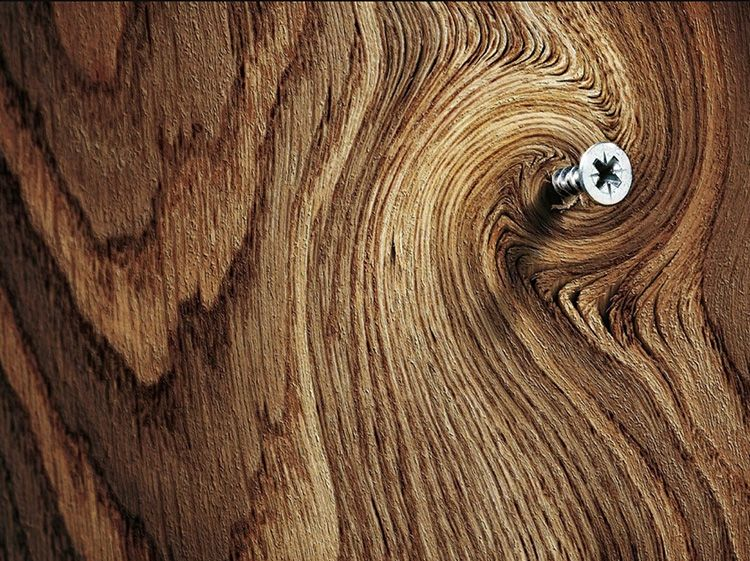 Если вы понимаете, что важно закрепить дерево более плотной консистенции, то в этом случае дрелью делается отверстие
